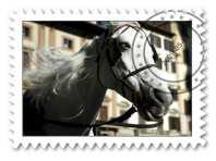 horse-stamp